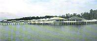 Tg-Piai-Resort