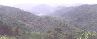 khaoyai1